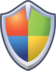 Security shield windows